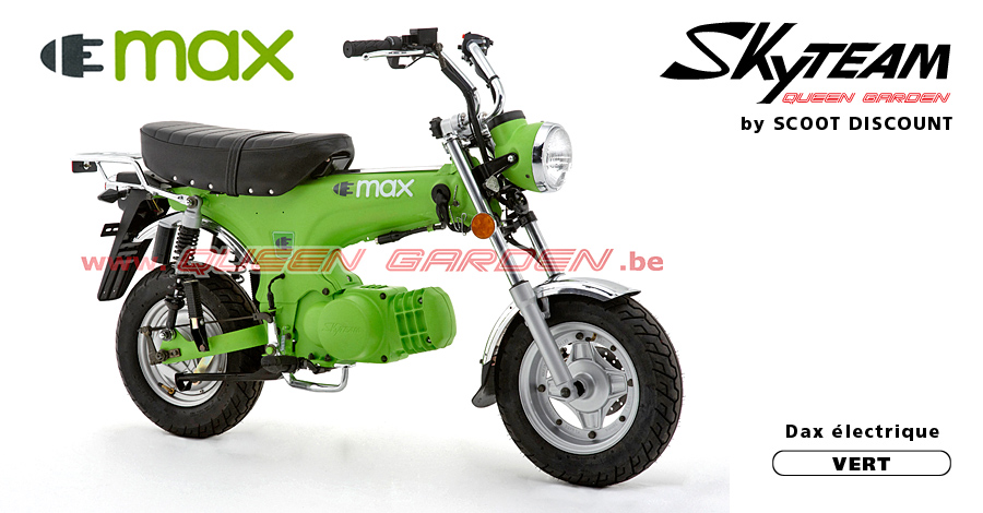dax électrique Skyteam ELMAX vert
