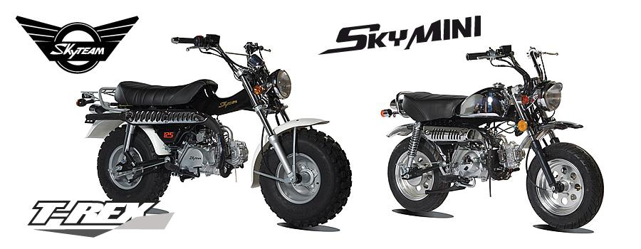 moto T-Rex et mini temps Skymini de Skyteam